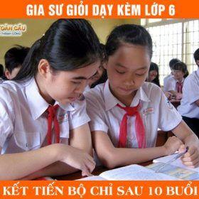 Gia Sư lớp 6 Giỏi Dạy Kèm Toán, Lý, Văn, Anh TPHCM