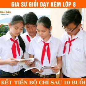 Gia sư lớp 8 giỏi dạy kèm Toán, Lý, Hóa, Văn, Anh